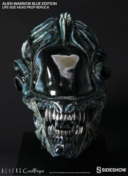 Aliens Replik 1/1 Alien Warrior Kopf Blue Edition 45 cm